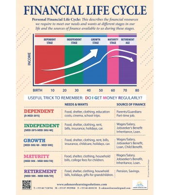 Financial Life Cycle Poster