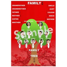 Family - Chinese Poster