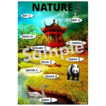 Nature - Chinese Poster