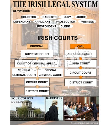 The Irish Legal System Poster