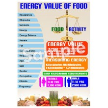 Energy Value of Food Poster