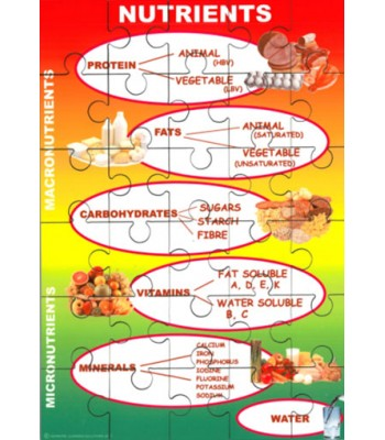 Nutrients Jigsaw