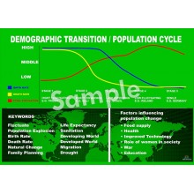 Demographic Transition Poster