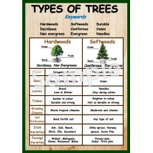 Types of Trees Poster