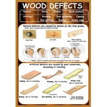Wood Defects Poster