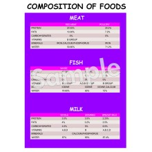 Composition of Foods Poster