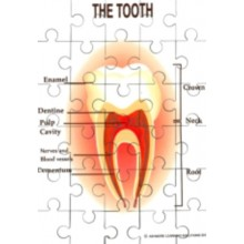 Teeth Jigsaw